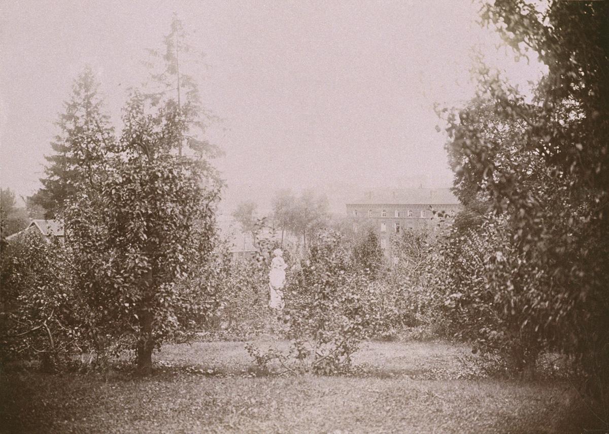 Le jardin d'agrément du Familistère ouvre sur l'aile gauche du Palais social.