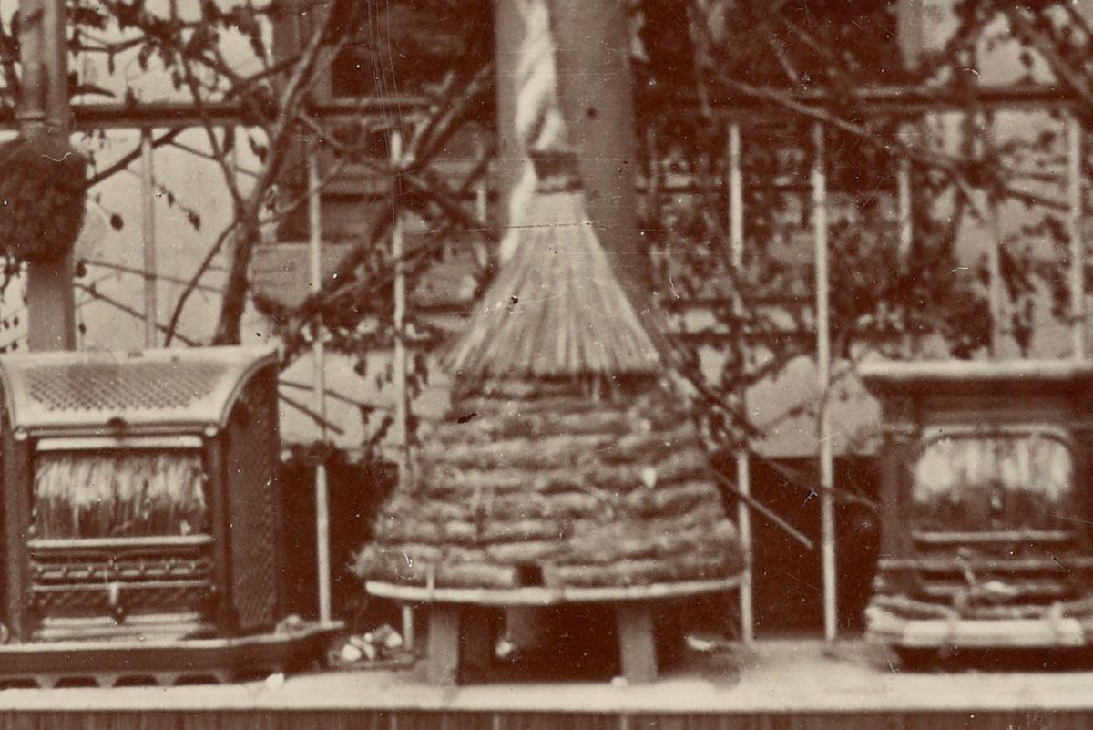 Détail de la photographie montrant la ruche du trophée de l'atelier d'emballage.