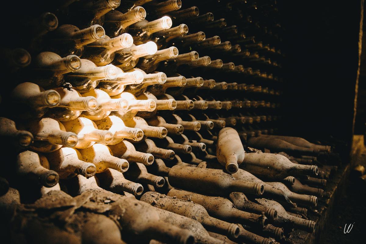 Vue des bouteilles dans la cave du Familistère