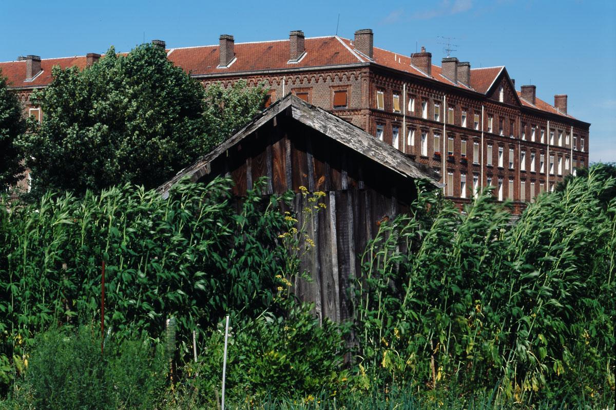 La photographie montre une cabane de jardin et le pavillon Cambrai