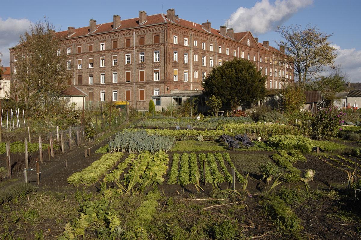 Des jardins potagers existent toujours près du pavillon Cambrai du Familistère.