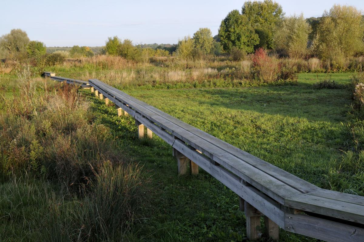 Des pontons en bois parcourent le jardin de la presqu'île du Familistère.