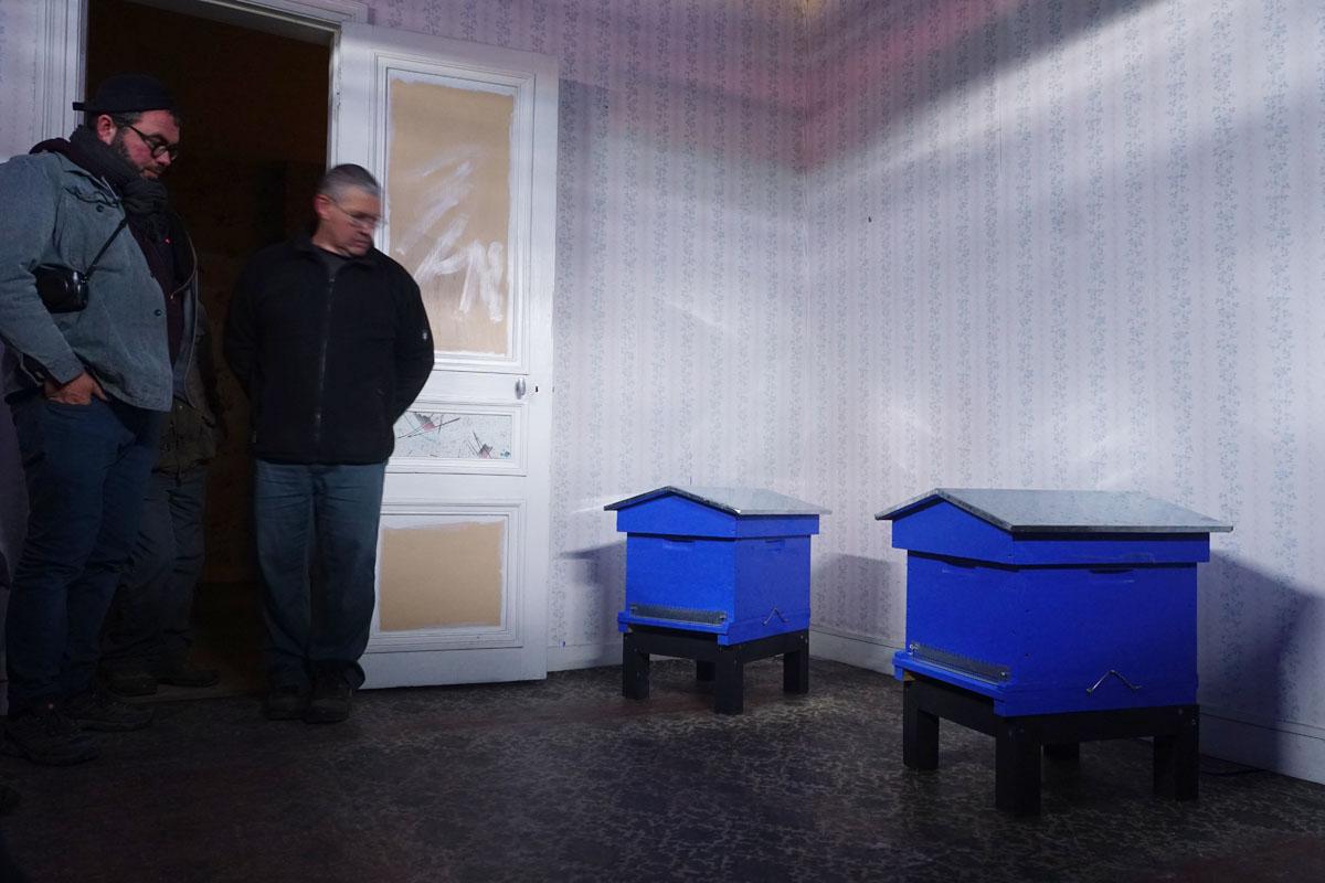 Deux ruches sont posées au sol de la pièce d'un appartement du Palais social.