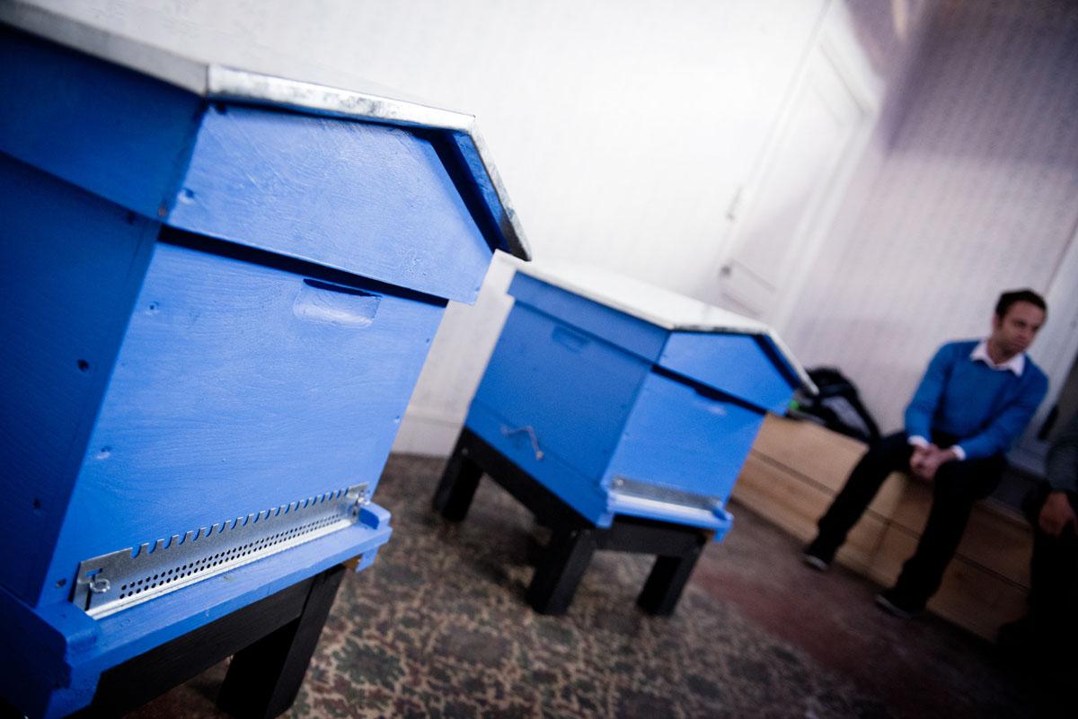 La photographie montre deux ruches bleues dans un appartement du Palais social