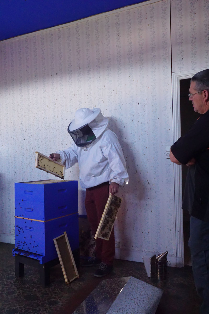 La photographie montre Olivier Darné visitant les ruches de l'aile droite du Fam