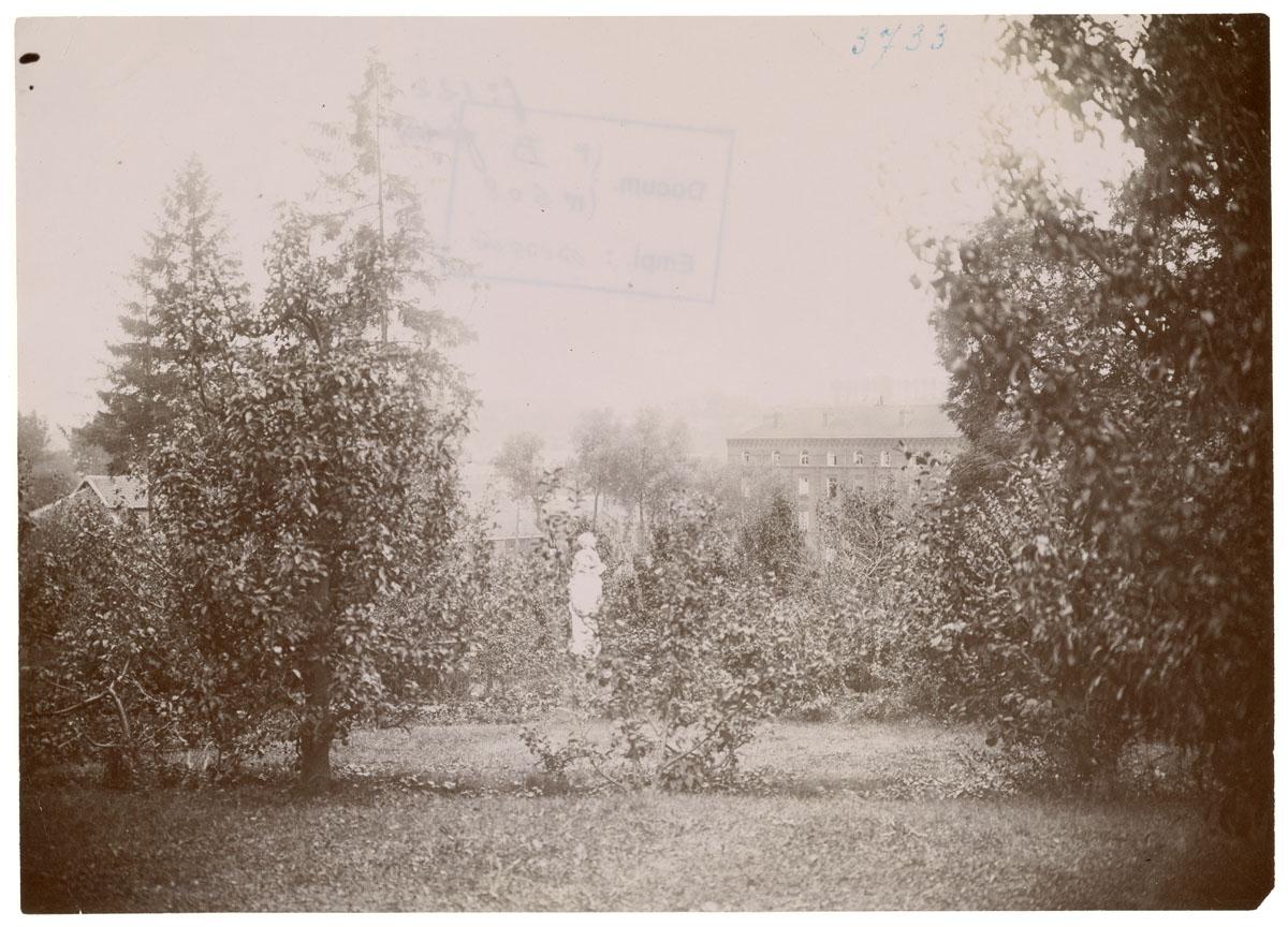 La photographie montre la prairie basse du jardin d'agrément du Familistère.